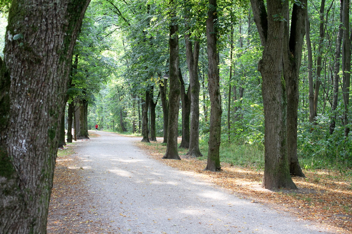 Südpark Allee