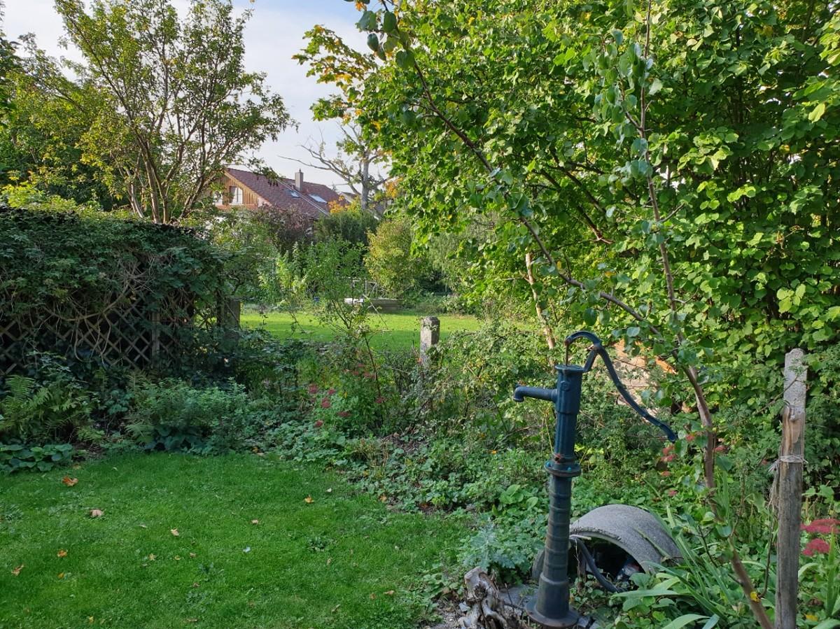 Garten Sicht